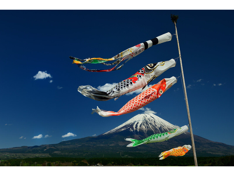 xcarp streamer koinobori14 jpg pagespeed ic bKA8u8AcxR